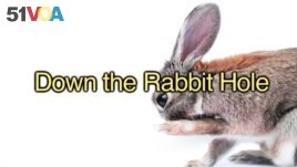 English in a Minute: To Fall Down the Rabbit Hole