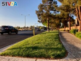 Traffic passes grassy landscape on Green Valley Parkway on Friday, April 9, 2021, in suburban Henderson, Nev. (AP Photo/Ken Ritter)