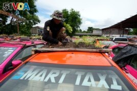 A man takes care of a rooftop garden on a taxi.