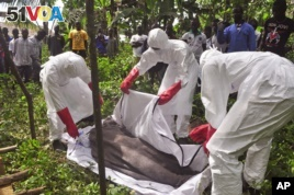 Ebola Is Top Health Story for 2014