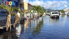This file photo shows the result of high-tide coastal flooding in the city of Honolulu, on the Hawaiian island of Oahu. (Photo Credit: Hawaii Sea Grant King Tides Project)