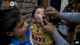 Will Synthetic Vaccine Stop Polio?
