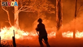 This picture taken on December 31, 2019 shows a firefighter hosing down trees and flying embers in an effort to secure nearby houses from bushfires near the town of Nowra in the Australian state of New South Wales.