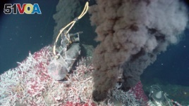 A hydrothermal vent emits jet-black smoke. This material is usually made of minerals that solidify and form chimneys on the sea floor. However, hydrogen can also be a byproduct of vents. (Photo courtesy of National Oceanic and Atmospheric Administration)