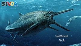 Sea monster swam the seas 170 million years ago