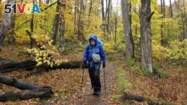 Artist Rob Mullen walks down Long Trail, the country's oldest long distance trail, in Manchester, Vt., on Tuesday, Oct. 13, 2020. Mullen was nearing the end of his 272-mile month-long hike down the length of Vermont, painting along the way. (AP Photo/Lisa