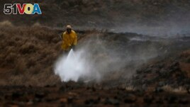 A Big Island firefighter puts out a blaze near Waimea, Hawaii, on Thursday, Aug. 5, 2021. The area was scorched by the state's largest ever wildfire. (AP Photo/Caleb Jones)
