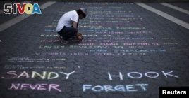 US Lawmakers Try Again to Keep Guns from Mentally Ill
