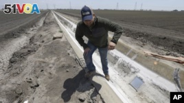 File - Farmer Gino Celli climbs out of a irrigation canal that is covered in dried salt on a field he farms near Stockton, Calif., May 2015.
