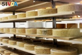 Wisconsin is known for its cheese. Here, it ages on wood at LaClare Farms near Pipe, Wisconsin, July 22, 2016.