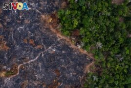 In this Nov. 23, 2019 photo, a burned area of the Amazon rainforest is seen in Prainha, Para state, Brazil.