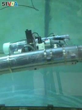 US Students Built Robot to Uncover Submerged Unexploded Mines