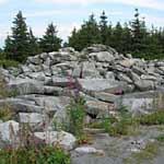 Along a trail on Spruce Knob